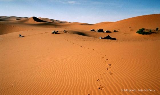 Sahara, Maroc, été 2006
